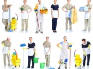 Cleaning in Gateshead